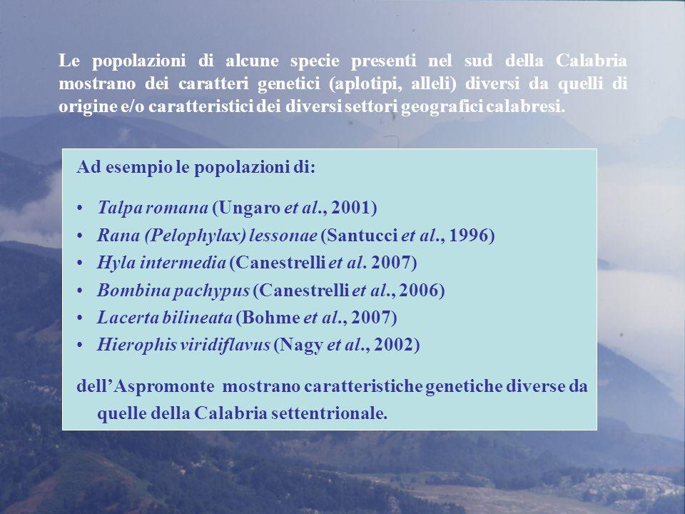 Ad esempio le popolazioni di: Talpa romana (Ungaro et al., 2001) Rana (Pelophylax) lessonae (Santucci et al., 1996) Hyla intermedia (Canestrelli et al.