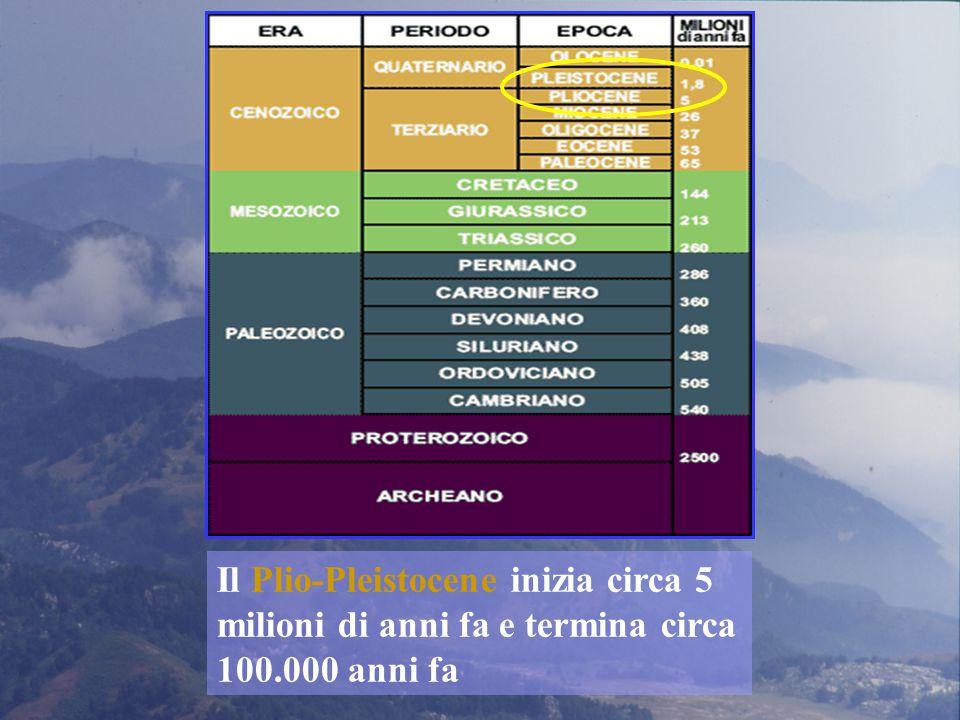 Le popolazioni di Talpa romana della Calabria sono le uniche che si differenziano geneticamente rispetto a quelle dell'intero areale della specie e quelle dell'Aspromonte costituiscono una unità a parte (Ungaro et al., 2001) © gaetano aloise