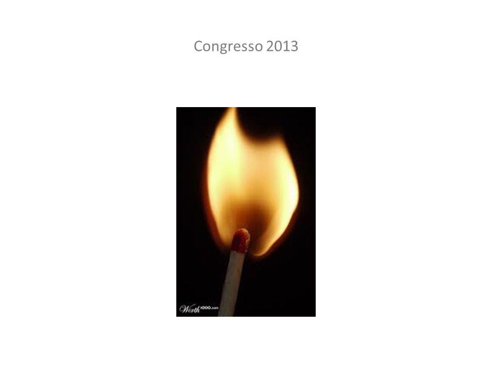 Congresso 2013