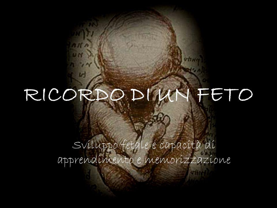 RICORDO DI UN FETO Sviluppo fetale e capacità di apprendimento e memorizzazione