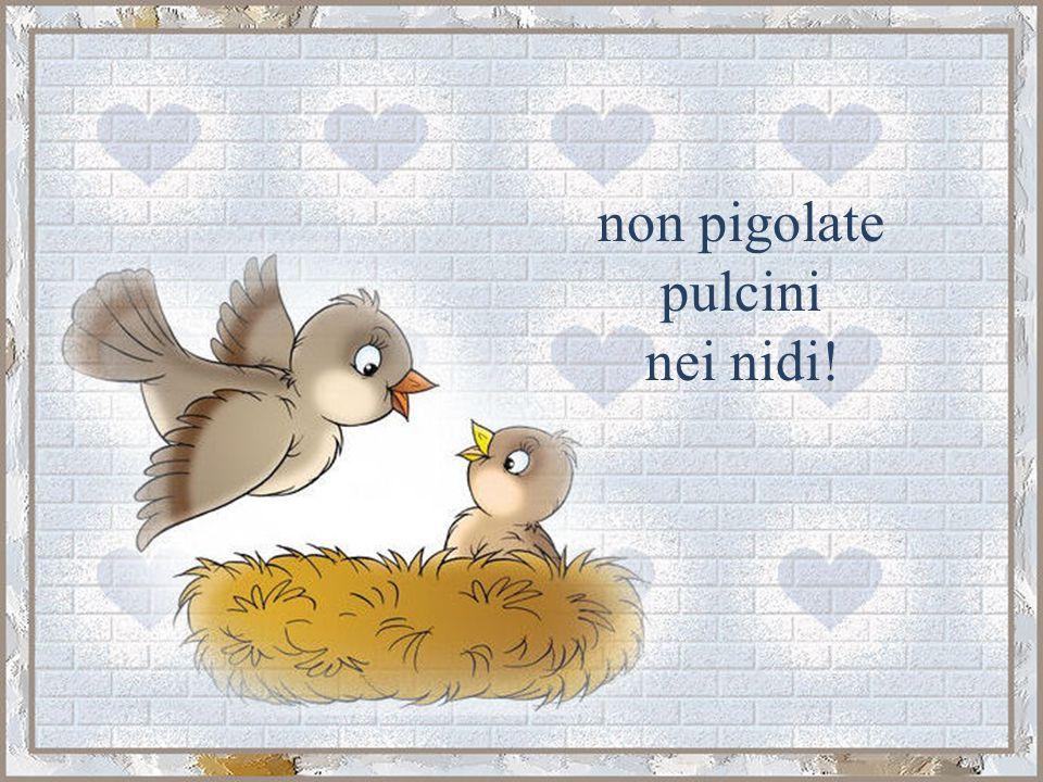 non pigolate pulcini nei nidi!