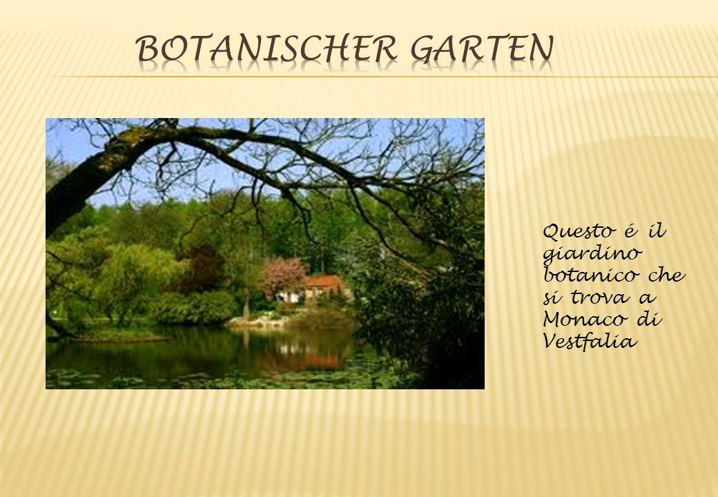 Questo é il giardino botanico che si trova a Monaco di Vestfalia