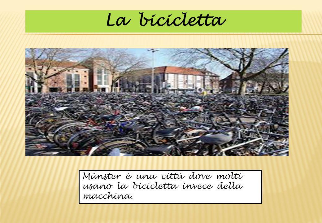 Münster é una cittá dove molti usano la bicicletta invece della macchina. La bicicletta