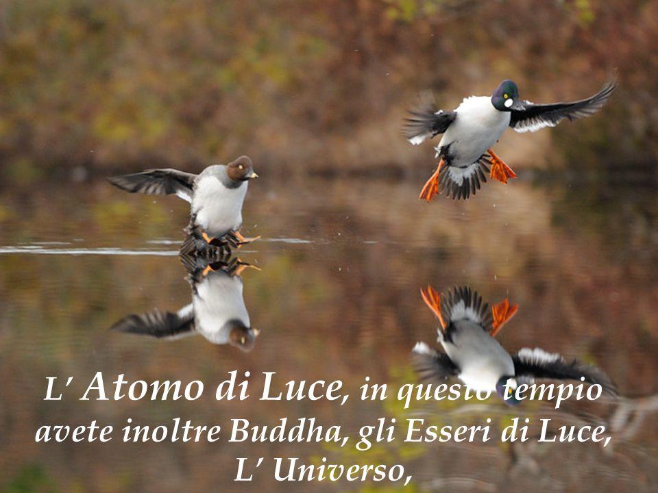 L' Atomo di Luce, in questo tempio avete inoltre Buddha, gli Esseri di Luce, L' Universo,