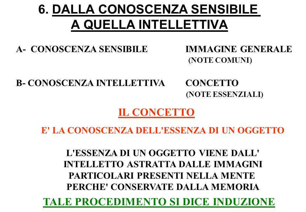 6. DALLA CONOSCENZA SENSIBILE A QUELLA INTELLETTIVA A- CONOSCENZA SENSIBILEIMMAGINE GENERALE B- CONOSCENZA INTELLETTIVACONCETTO (NOTE COMUNI) (NOTE ES
