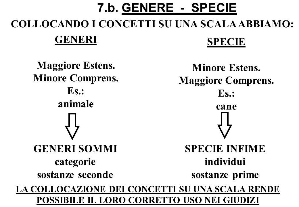 7.b. GENERE - SPECIE COLLOCANDO I CONCETTI SU UNA SCALA ABBIAMO: GENERI Maggiore Estens. Minore Comprens. Es.: animale GENERI SOMMI categorie sostanze