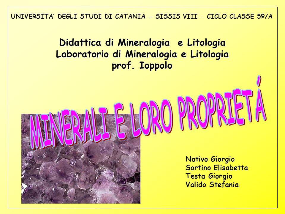 UNIVERSITA' DEGLI STUDI DI CATANIA - SISSIS VIII - CICLO CLASSE 59/A Didattica di Mineralogia e Litologia Laboratorio di Mineralogia e Litologia prof.