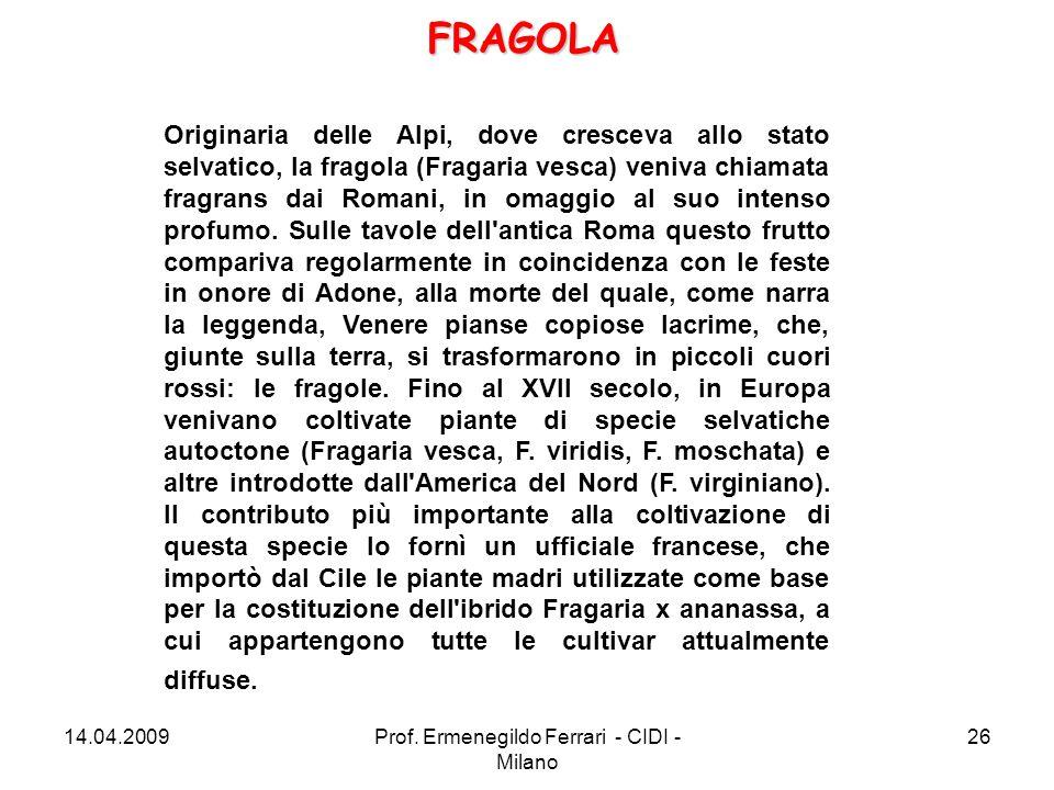 Originaria delle Alpi, dove cresceva allo stato selvatico, la fragola (Fragaria vesca) veniva chiamata fragrans dai Romani, in omaggio al suo intenso