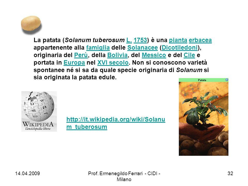 http://it.wikipedia.org/wiki/Solanu m_tuberosum La patata (Solanum tuberosum L. 1753) è una pianta erbacea appartenente alla famiglia delle Solanacee