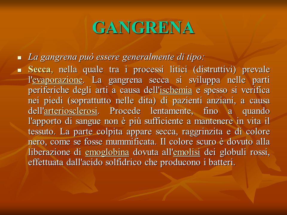 GANGRENA La gangrena può essere generalmente di tipo: La gangrena può essere generalmente di tipo: Secca, nella quale tra i processi litici (distrutti