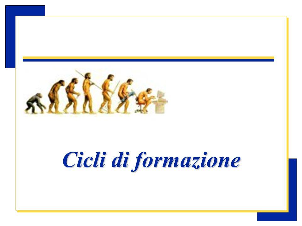 Carlo Michelotti, Gov.Distr.1980 (1996/97) Ciclo di formazione per i nuovi dirigenti e ciclo di aggiornamento