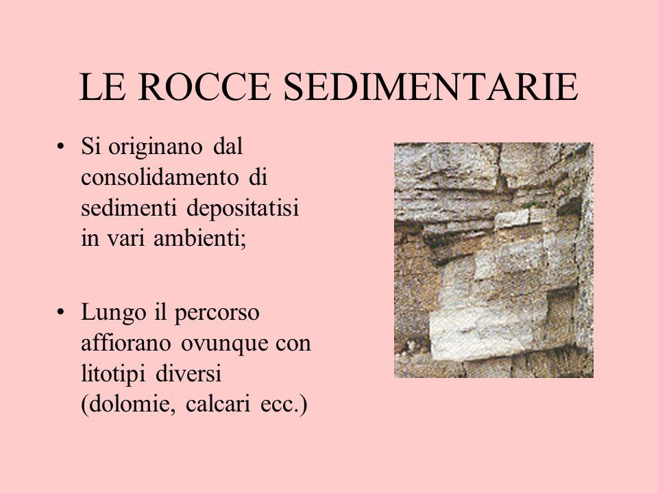 LE ROCCE SEDIMENTARIE Si originano dal consolidamento di sedimenti depositatisi in vari ambienti; Lungo il percorso affiorano ovunque con litotipi div