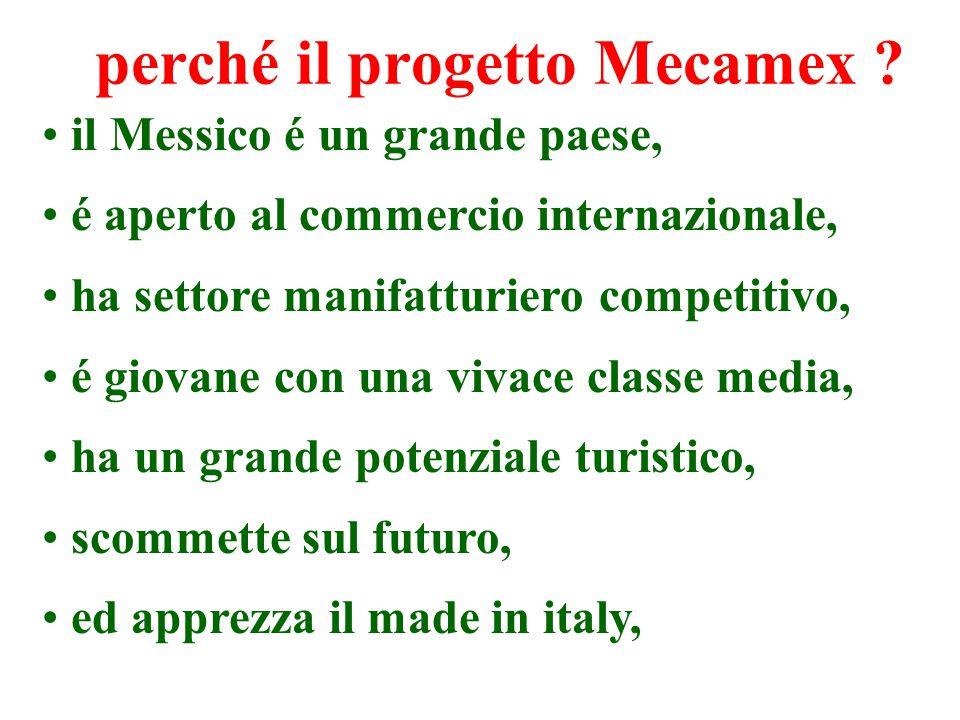 perché il progetto Mecamex .