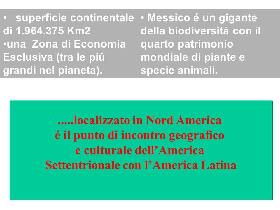 Messico é un gigante della biodiversitá con il quarto patrimonio mondiale di piante e specie animali.