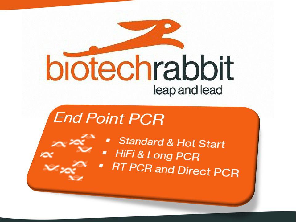 Che cosa offre biotechrabbit ? Prodotti per end point PCR
