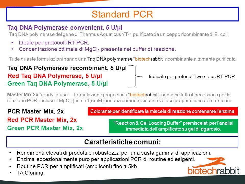 Hot Start PCR Caratteristiche comuni: Hot Start PCR altamente specifica per amplificati fino a 5000 basi TA Cloning Hot Start Taq DNA Polymerase, 5 U/µl Hot Start Taq DNA Polymerase convenient, 5 U/µl Hot Start PCR Master Mix, 2x Red Hot Start Taq DNA Polymerase, 5 U/µl Green Hot Start Taq DNA Polymerase, 5 U/µl Green Hot Start PCR Master Mix, 2x Red Hot Start PCR Master Mix, 2x in dotazione è il 5x PCR Enhancer biotechrabbit PCR enhancer componente opzionale per amplificazioni di templati sporchi o particolarmente poveri (low copy number) Taq DNA polymerase di Thermus Aquaticus YT-1 Taq DNA polymerase biotechrabbit ricombinante Formulazioni Taq DNA Polimerasi libera Formulazioni Taq DNA Polimerasi in Master Mix 2x Formulazioni ideali per protocolli di RT-PCR Anticorpo biotechrabbit a rapida inattivazione per step di denaturazione rapidi ed efficaci Master Mix 2x ready to use – formulazione proprietaria biotechrabbit , contiene tutto il necessario per la reazione PCR, incluso il MgCl 2 (finale 1,5mM) per una comoda, sicura e veloce preparazione dei campioni.