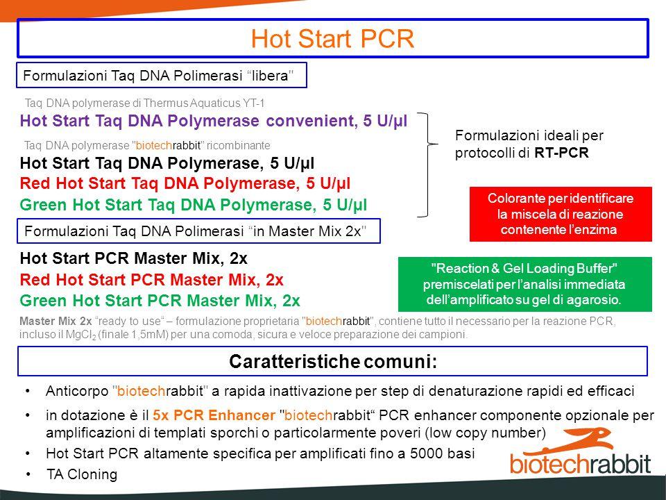 Hot Start PCR Caratteristiche comuni: Hot Start PCR altamente specifica per amplificati fino a 5000 basi TA Cloning Hot Start Taq DNA Polymerase, 5 U/