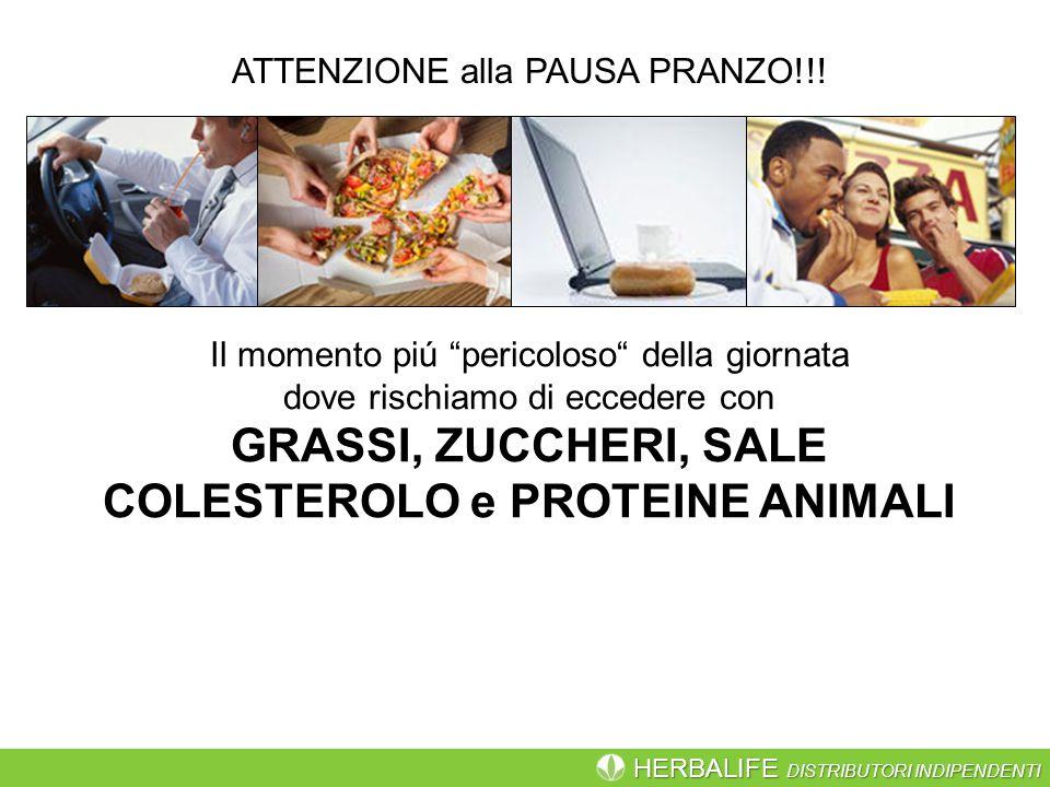 HERBALIFE DISTRIBUTORI INDIPENDENTI ATTENZIONE alla PAUSA PRANZO!!.