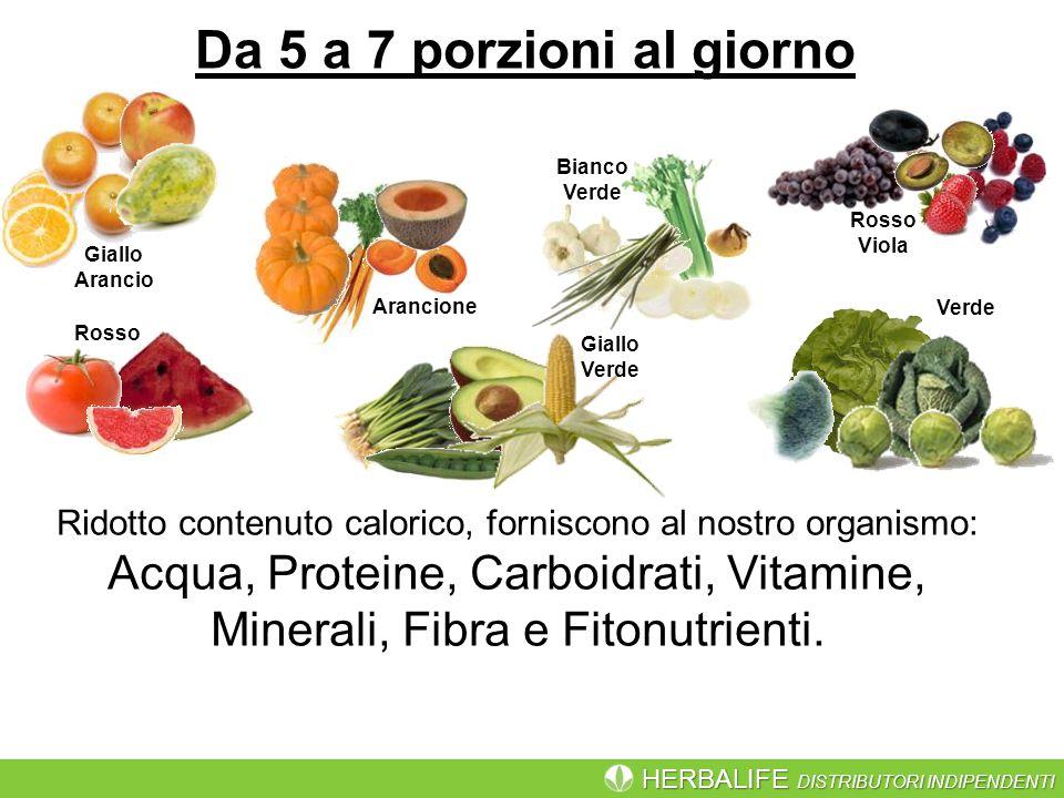 HERBALIFE DISTRIBUTORI INDIPENDENTI Da 5 a 7 porzioni al giorno Ridotto contenuto calorico, forniscono al nostro organismo: Acqua, Proteine, Carboidrati, Vitamine, Minerali, Fibra e Fitonutrienti.