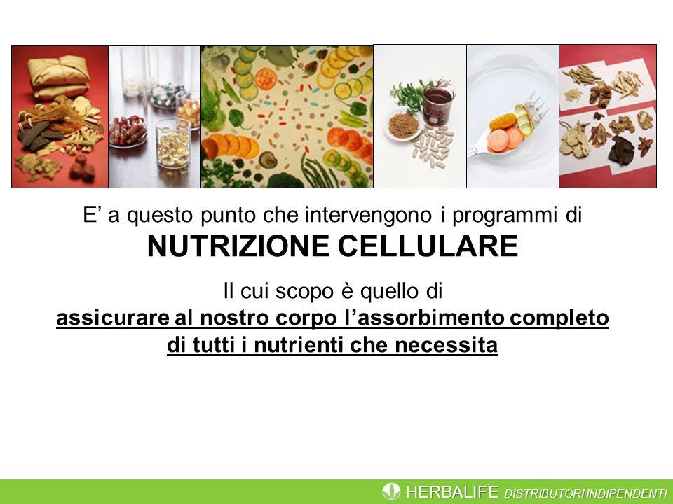 HERBALIFE DISTRIBUTORI INDIPENDENTI E' a questo punto che intervengono i programmi di NUTRIZIONE CELLULARE Il cui scopo è quello di assicurare al nostro corpo l'assorbimento completo di tutti i nutrienti che necessita