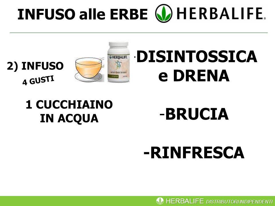 HERBALIFE DISTRIBUTORI INDIPENDENTI INFUSO alle ERBE -DISINTOSSICA e DRENA -BRUCIA -RINFRESCA 1 CUCCHIAINO IN ACQUA 2) INFUSO 4 GUSTI