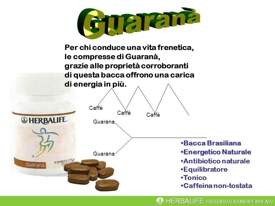 HERBALIFE DISTRIBUTORI INDIPENDENTI Bacca BrasilianaBacca Brasiliana Energetico NaturaleEnergetico Naturale Antibiotico naturale Equilibratore Tonico