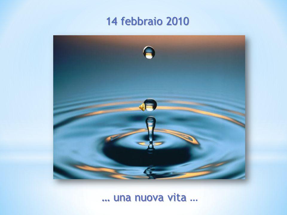 14 febbraio 2010 … una nuova vita … una nuova vita …