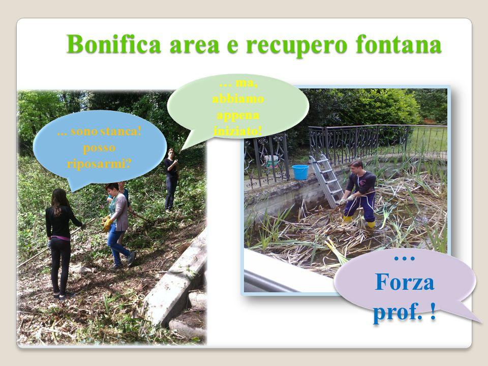 Come valorizzare il percorso botanico.Formazione degli allievi come guide botaniche.