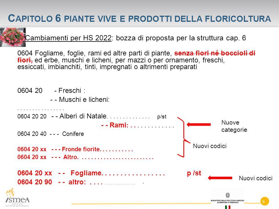 C APITOLO 6 PIANTE VIVE E PRODOTTI DELLA FLORICOLTURA Cambiamenti per HS 2022: bozza di proposta per la struttura cap.