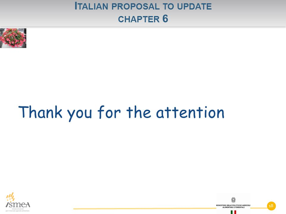 I TALIAN PROPOSAL TO UPDATE CHAPTER 6 Thank you for the attention 18