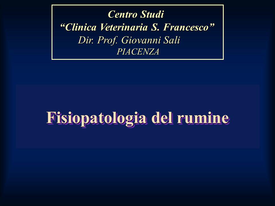 Fisiopatologia del rumine Centro Studi Centro Studi Clinica Veterinaria S.