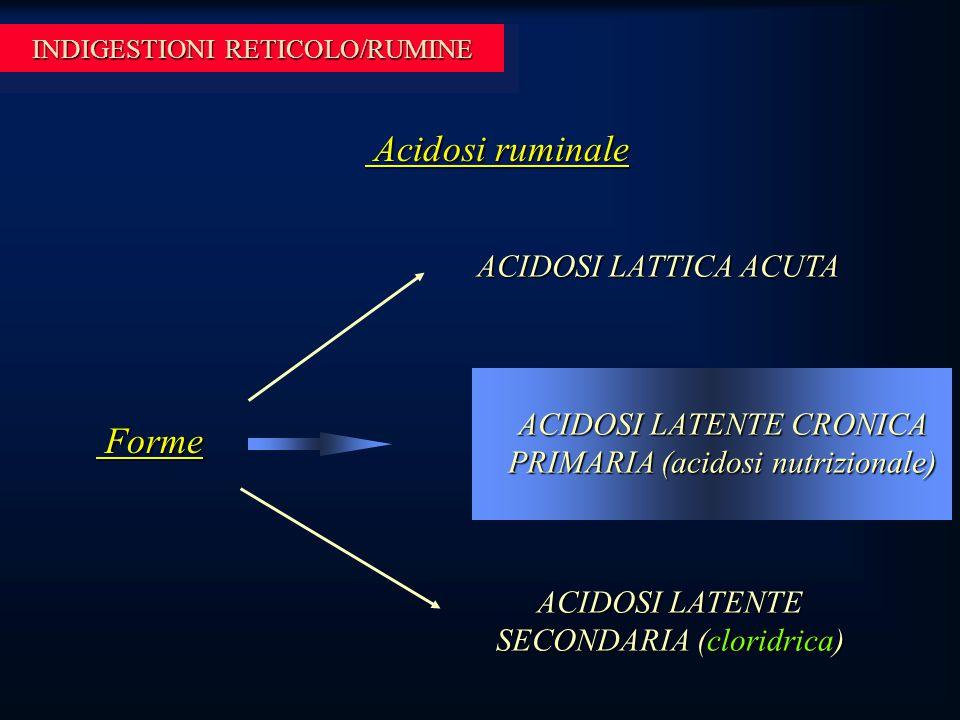 INDIGESTIONI RETICOLO/RUMINE Acidosi ruminale Acidosi ruminale ACIDOSI LATTICA ACUTA ACIDOSI LATENTE CRONICA PRIMARIA (acidosi nutrizionale) ACIDOSI LATENTE SECONDARIA (cloridrica) Forme Forme
