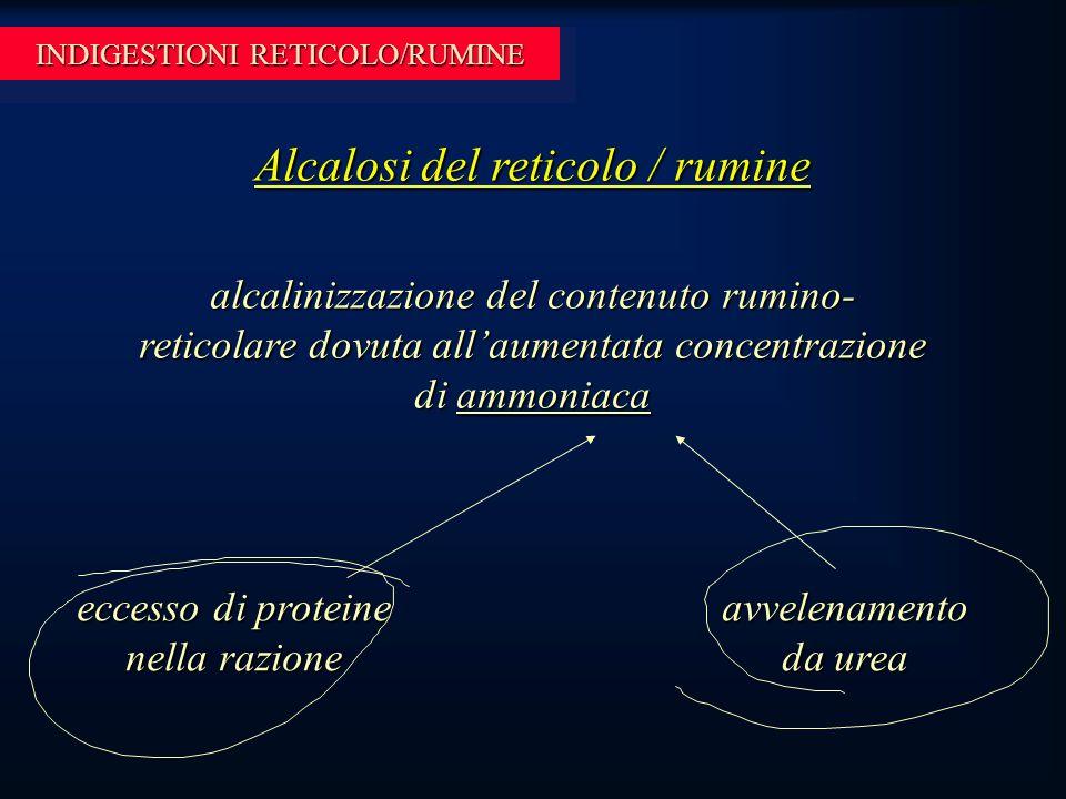 INDIGESTIONI RETICOLO/RUMINE Alcalosi del reticolo / rumine alcalinizzazione del contenuto rumino- reticolare dovuta all'aumentata concentrazione di ammoniaca eccesso di proteine nella razione avvelenamento da urea