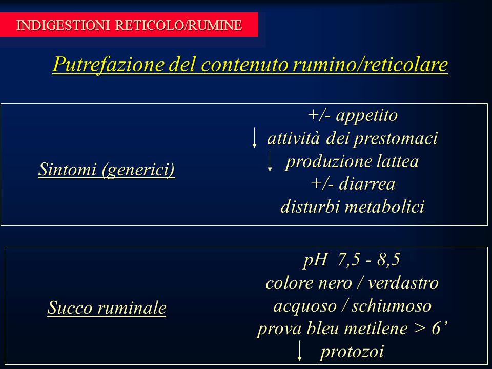 INDIGESTIONI RETICOLO/RUMINE Putrefazione del contenuto rumino/reticolare +/- appetito attività dei prestomaci produzione lattea +/- diarrea disturbi metabolici Sintomi (generici) Succo ruminale pH 7,5 - 8,5 colore nero / verdastro acquoso / schiumoso prova bleu metilene > 6' protozoi