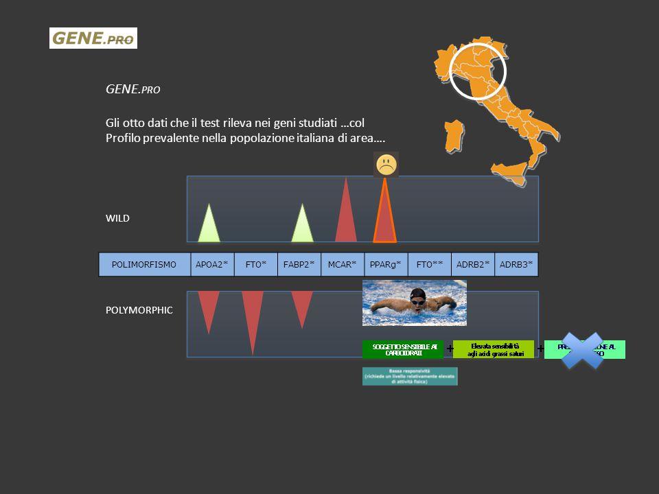 GENE. PRO Gli otto dati che il test rileva nei geni studiati …col Profilo prevalente nella popolazione italiana di area…. WILD POLYMORPHIC POLIMORFISM
