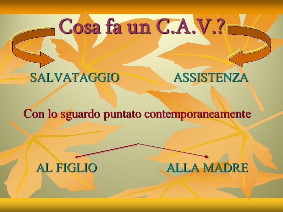 Cos'è un C.A.V.