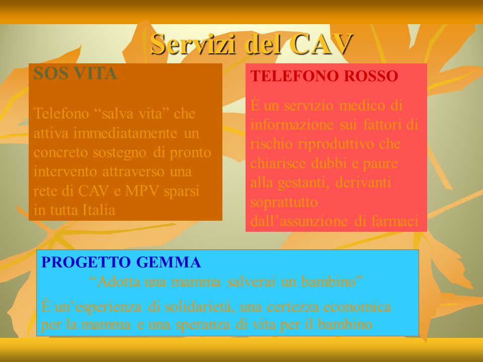 COME COLLABORARE CON IL C.A.V..