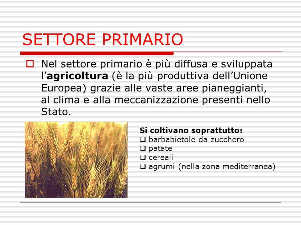 SETTORE PRIMARIO  Nel settore primario è più diffusa e sviluppata l'agricoltura (è la più produttiva dell'Unione Europea) grazie alle vaste aree pian
