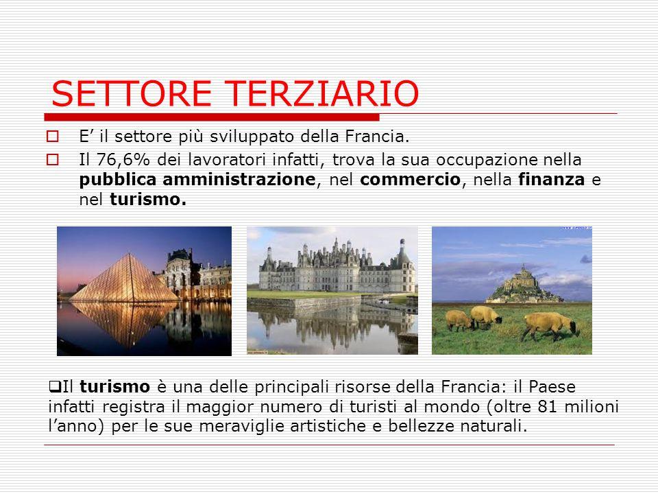 SETTORE TERZIARIO  E' il settore più sviluppato della Francia.  Il 76,6% dei lavoratori infatti, trova la sua occupazione nella pubblica amministraz