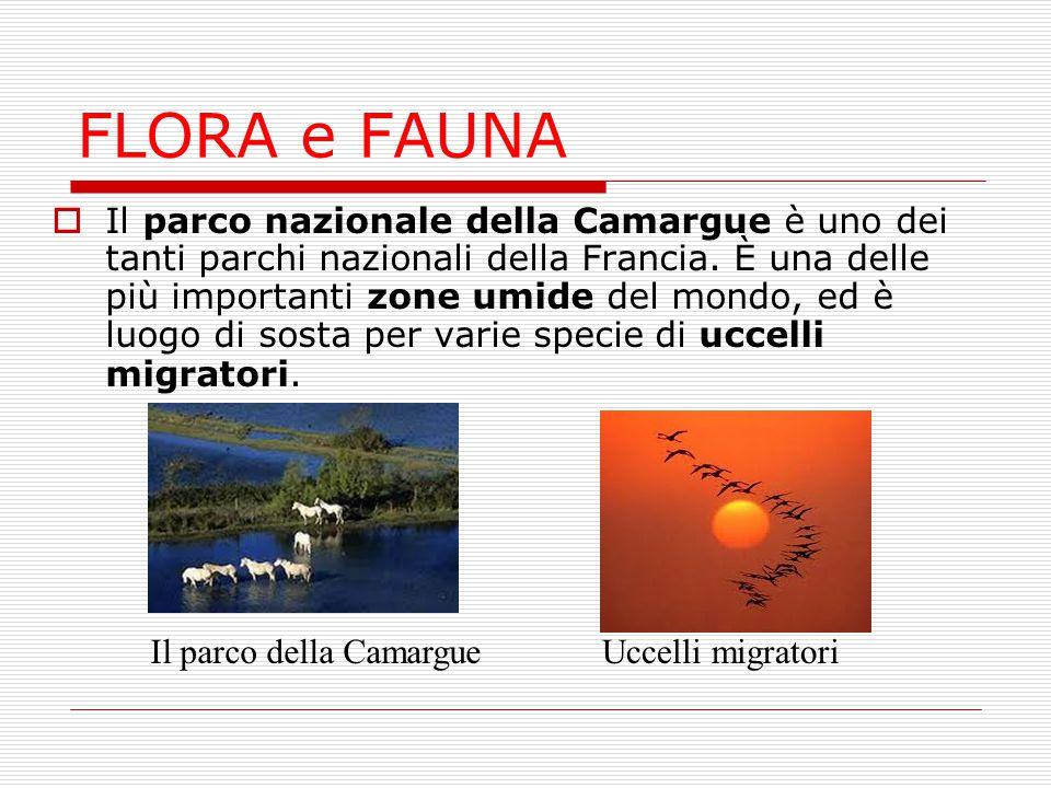 FLORA e FAUNA  Il parco nazionale della Camargue è uno dei tanti parchi nazionali della Francia. È una delle più importanti zone umide del mondo, ed