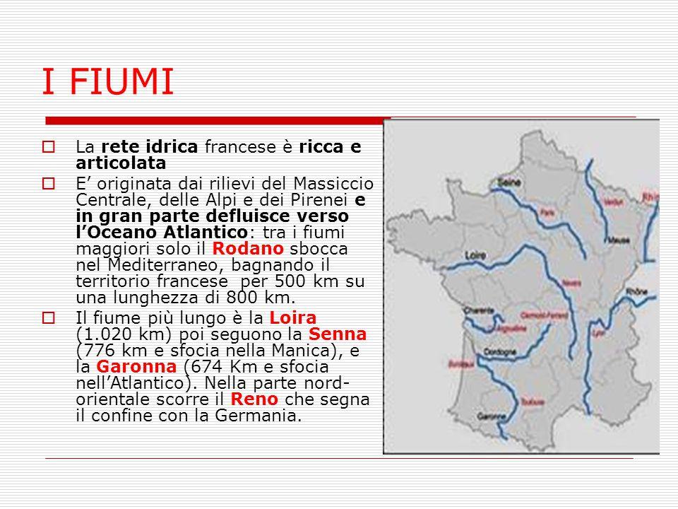 I FIUMI  La rete idrica francese è ricca e articolata  E' originata dai rilievi del Massiccio Centrale, delle Alpi e dei Pirenei e in gran parte def