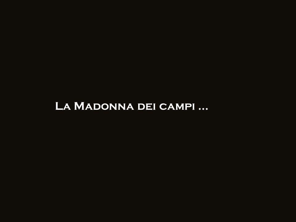 La Madonna dei campi …