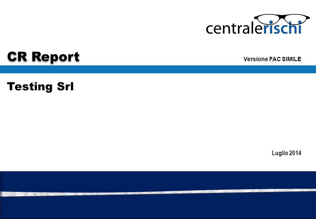 Financial Advisory Testing Srl Versione FAC SIMILE CR Report Luglio 2014