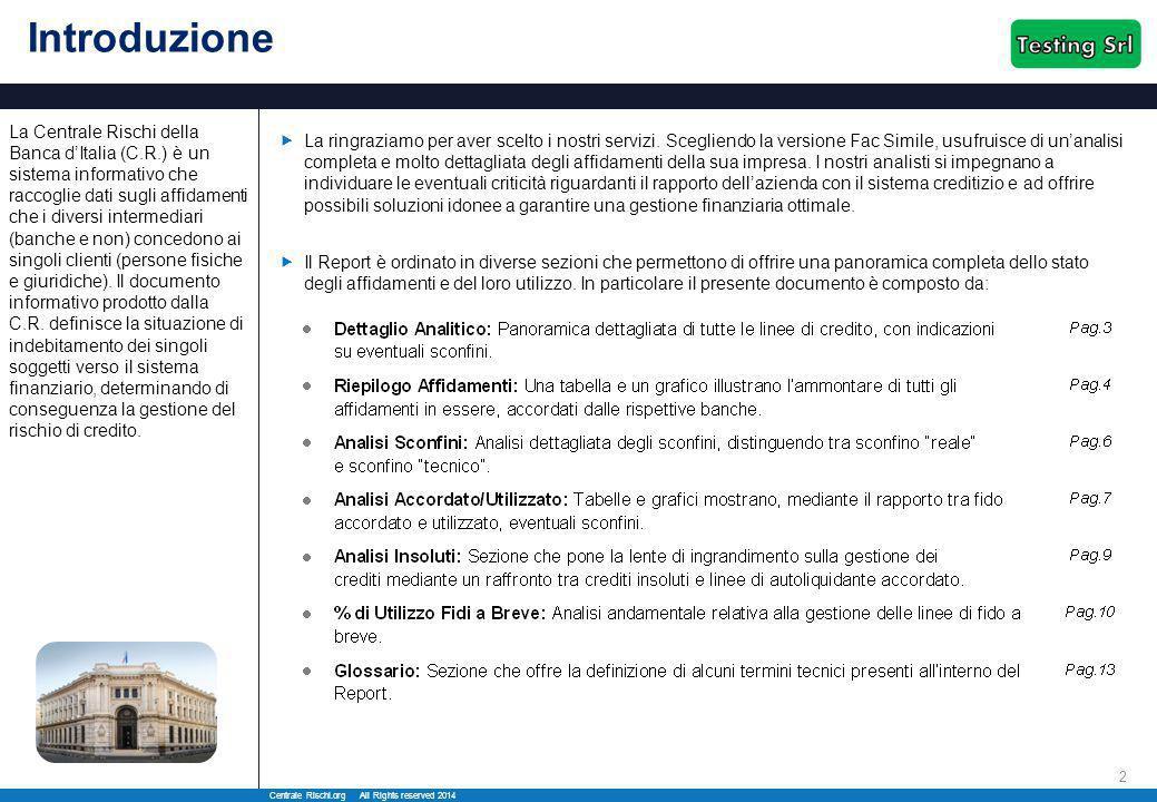 Centrale Rischi.org All Rights reserved 2014 3 Dettaglio Analitico