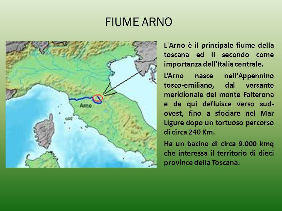 FIUME ARNO L'Arno è il principale fiume della toscana ed il secondo come importanza dell'Italia centrale. L'Arno nasce nell'Appennino tosco-emiliano,