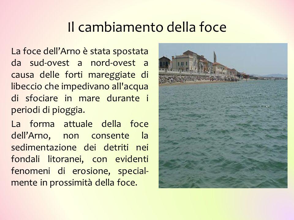 Il cambiamento della foce La foce dell'Arno è stata spostata da sud-ovest a nord-ovest a causa delle forti mareggiate di libeccio che impedivano all'a