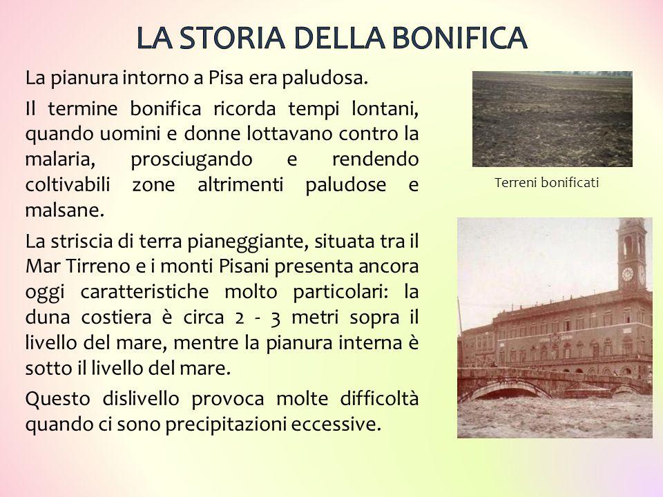 La pianura intorno a Pisa era paludosa. Il termine bonifica ricorda tempi lontani, quando uomini e donne lottavano contro la malaria, prosciugando e r