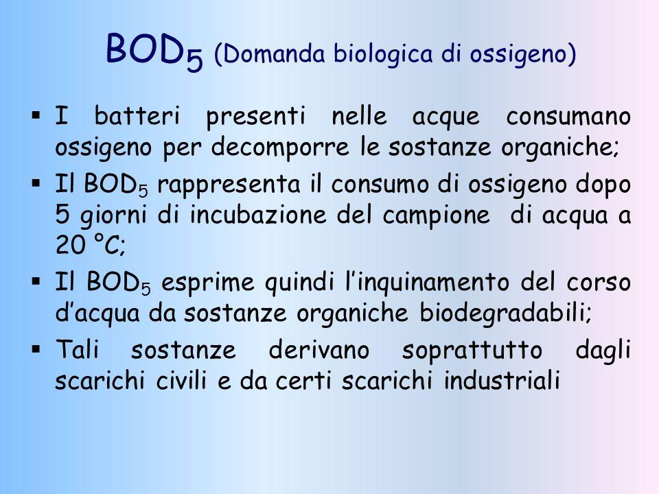 BOD 5 (Domanda biologica di ossigeno)  I batteri presenti nelle acque consumano ossigeno per decomporre le sostanze organiche;  Il BOD 5 rappresenta
