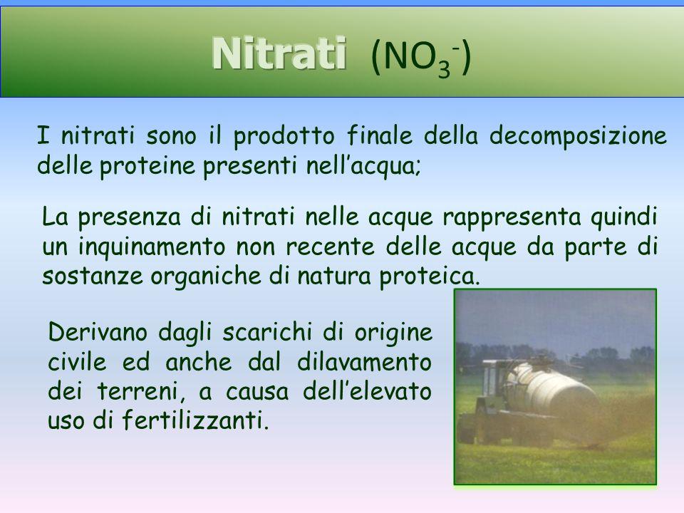 La presenza di nitrati nelle acque rappresenta quindi un inquinamento non recente delle acque da parte di sostanze organiche di natura proteica. I nit