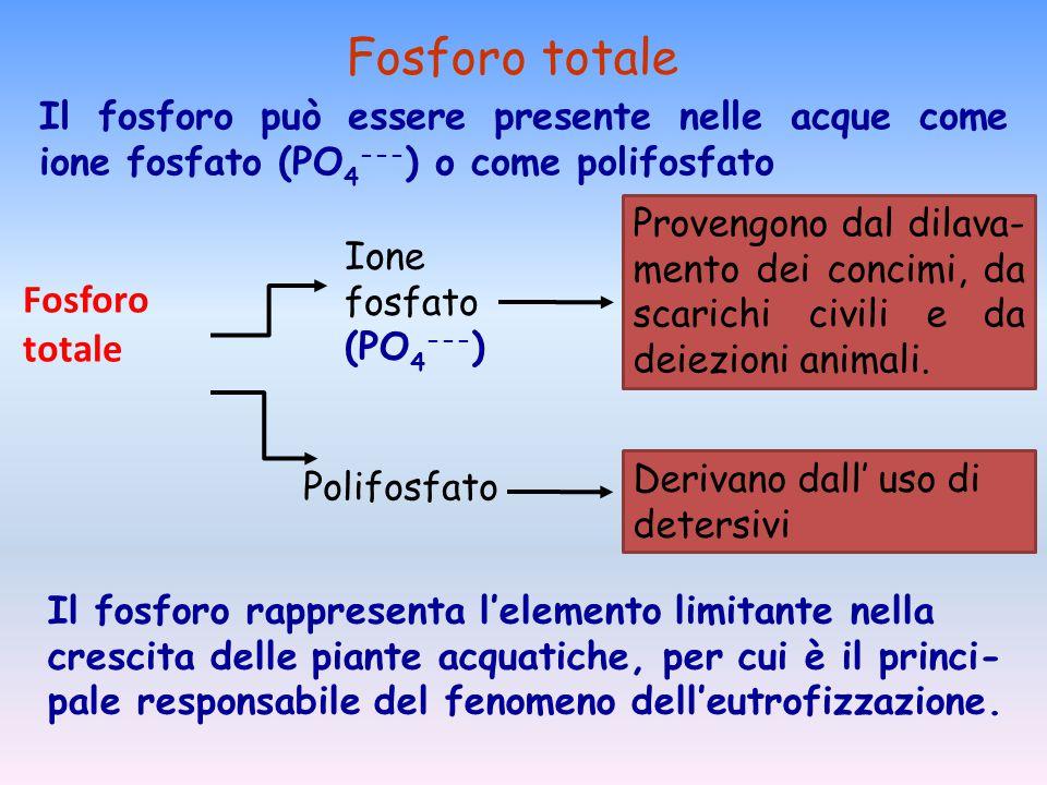 Fosforo totale Ione fosfato (PO 4 --- ) Polifosfato Provengono dal dilava- mento dei concimi, da scarichi civili e da deiezioni animali. Derivano dall